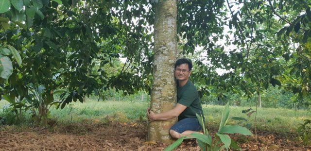 """Một cây dổi đổi cả…cây vàng: Nhiều nhà vườn """"cháy"""" giống"""